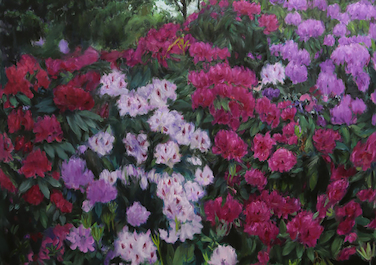 Rhododendron, 2016, Oil on canvas, 160 x 140 cm