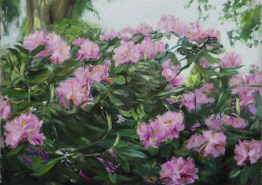 Rhododendron III, 2014, Oil on canvas, 80 x 100 cm